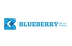 Offshore Companies in Lebanon: Blueberry Consulting & Trade Sal Offshore