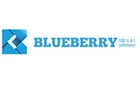Companies in Lebanon: Blueberry Consulting & Trade Sarl