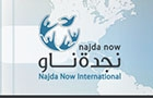 Ngo Companies in Lebanon: Najda Now international NNI