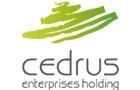 Companies in Lebanon: Cedrus Enterprises Sal Holding