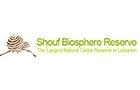Ngo Companies in Lebanon: Al Shouf Cedar Society Al Shouf Cedar Nature Reserve