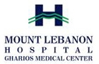 Hospitals in Lebanon: Mount Lebanon Hospital