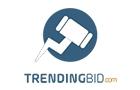 Companies in Lebanon: Trending Bid Sal