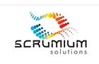 Companies in Lebanon: Societe Scrumium Solutions Sarl