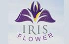 Hotels in Lebanon: Iris Flower Hotel