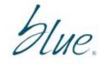 Media Services in Lebanon: Blue Media Sarl