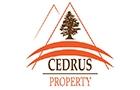 Companies in Lebanon: Cedrus Property Sarl
