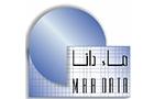 Statistics in Lebanon: MaaData Group Statistical Consulting center