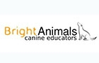 Clinic in Lebanon: Bright Animals Sarl