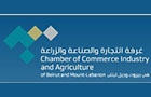 Ngo Companies in Lebanon: Chamber Of Commerce, Industry & Agriculture Of Beirut & Mount Lebanon