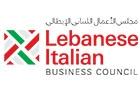 Ngo Companies in Lebanon: The Lebanese Italian Business Council Lebitalia