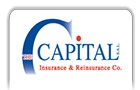 Companies in Lebanon: the capital insurance & reinsurance co sal