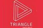 Companies in Lebanon: Triangle Web Design And Development Sarl
